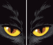 WOWindow Posters Yellow-eyed Cat Halloween Window Decoration Two 90cm x 150cm Backlit Posters