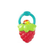 Bright Starts Berry Vibrating Teether - Berry