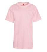 Hanes 5370 Youth Comfortblend Ecosmart Tee Pale Pink - Large
