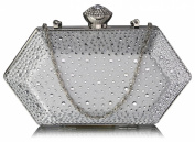 Satin Boxed Rhinestone Studded Crystal Clasp Clutch Bag (20cm x 10cm ) with PreciousBags DustBag