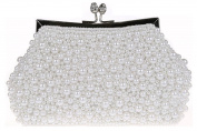 Jonesport Women's Clutch Wristlet Evening Bags Vintage Evening Cocktail Wedding Party Handbag Metel Glass Pu