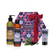 STENDERS Wondrous blueberry collection