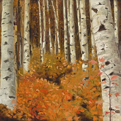 "Oil Painting Print of Quaking Aspen Forest"" Orange Study"" -11x11, Painted By Stewart Huntington"