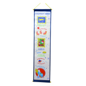 Precious Moments Goodnight Moon Growth Chart