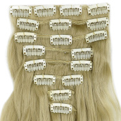 60cm Long Curly Wavy Ash Blonde Clip in on 8 Pieces Full Head Set Hair Extensions 8pcs Hairpiece Extension for Girl Lady Women