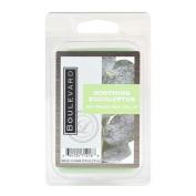Boulevard 70ml Soy Wax Melt - Soothing Eucalyptus