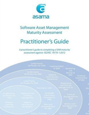 Software Asset Management Maturity Assessment: Practitioner's Guide