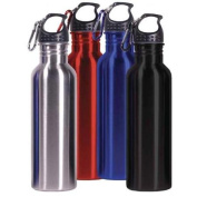 HDS Trading VF00602 Metal Sports Bottle With Clip in