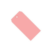 Pink 13 Pt. Shipping Tags SHPG11011J