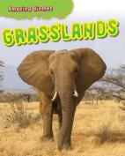 Grasslands (Amazing Biomes)
