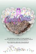 Candy Coated Chunk of Granite