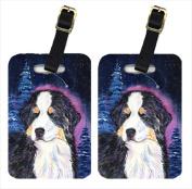 Carolines Treasures SS8446BT Starry Night Bernese Mountain Dog Luggage Tags - Pair Of 2