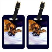 Carolines Treasures 7099BT Fawn Natural Great Dane And Puppy Luggage Tags Pack - 2