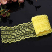 Dealglad 10 Yard Clothing Accessories Embroidered Lace Fabric Trim Ribbon Wedding Craft for DIY Handcraft Home Party Decorations