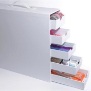 Totally-Tiffany Stash And Store 5-Drawer Case-White