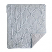 Living Textiles Baby Jersey Pintuck Skylar Comforter