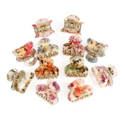 GSM Accessories 12PCS Womens Floral Print Small Size Acrylic Hair Claws HC022X2