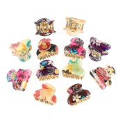 GSM Accessories 12PCS Womens Garden Floral Print Small Size Acrylic Hair Claws HC026X2
