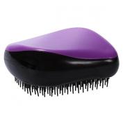Xcellent Global Glide Thru Detangling Compact Styler Hair Brush Anti-static Portable Hair Comb Travel Essentials, Purple 90ml BT002