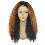 Lace Front Human Hair Wigs Afro Kinky Curly Ombre Colour 130 Density Brazilian Wig