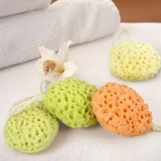 Cindy & Will 2Pcs Hydrophilic Polyurethane Nonirritant Baby/Infant/Toddler Bath Shower Sponge Brush/Ball, Random Colour