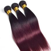 Ruiyu 7A Grade Ombre Hair Extensions Brazilian Virgin Hair 3 Bundles Straight 2 Tone Unprocessed Human Hair Weave 12 14 41cm #1b-99j Colour Pack of 3