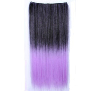 Simpleyourstyle 15colors Ombre Hair Extension Synthetic Clip in on Hair Extension for Women Not Full Wigs,ombre Black Pink Purple Green Blue Hair Extensions for Women Girls,1pc Weft=5clips Conneted