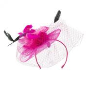 Multi Coloured Feather Fascinator with Circle Shaped Net - Fuchsia