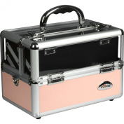 Sunrise 2-Tiers Trays Organiser Clear Top Cosmetic Makeup Travel Train Case with Mirror, Shoulder Strap, Pink Smooth