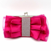 Kingluck New Fasian Formal Floral Rosette Organza Wedding Clutche Bag/Evening Bag