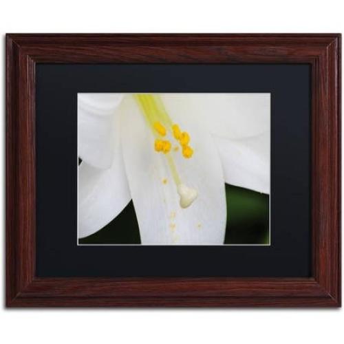 Trademark-Fine-Art-034-Adore-You-034-Canvas-Art-by-Monica-Mize-Black-Matte-Wood-Fram