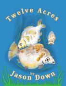 Twelve Acre