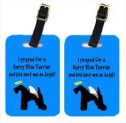 Carolines Treasures AN1042BT Kerry Blue Terrier Luggage Tags Pair - 2