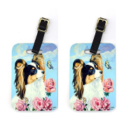 Carolines Treasures 7242BT Pair of 2 Papillon Luggage Tags