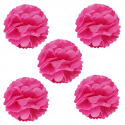 Wrapables Tissue Pom Poms Party Decorations for Weddings, Birthday Parties and Baby Showers, 20cm , Hot Pink, Set of 5