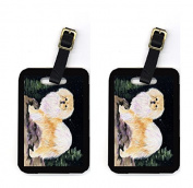 Carolines Treasures SS8504BT Starry Night Tibetan Spaniel Luggage Tag - Pair 2 10cm x 7cm .