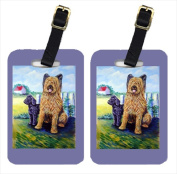 Carolines Treasures 7092BT Briard Training Day For The Puppy Luggage Tags Pack - 2