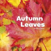 Autumn Leaves (Little Pebble