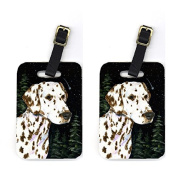 Carolines Treasures SS8518BT Starry Night Dalmatian Luggage Tag - Pair 2 10cm x 7cm .