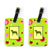 Carolines Treasures CK1082BT Greater Swiss Mountain Dog Luggage Tags Pair Of 2