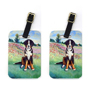 Carolines Treasures 7011BT Pair of 2 Bernese Mountain Dog Luggage Tags