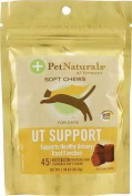 26664986948 Pet Naturals Of Vermont Fun Shaped Chews - UT Support