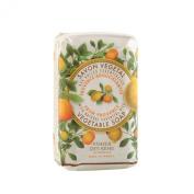 PANIER DES SENS Provence Citrus Vegetable Soap - 2 Bars, 160ml Each