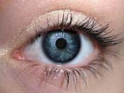 Orglamix Natural Mineral Eye Shadow   Cruelty-Free + Vegan