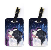 Carolines Treasures SS8369BT Pair of 2 Starry Night Border Collie Luggage Tags