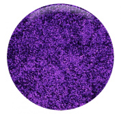 Plum - Purple Fine Glitter Powder .008 - 1/2 (lb) pound packaged In a thick 6 ml bag - Bulk and Wholesale Glitter Made In the USA!