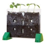 EDUCATIONAL INSIGHTS SPROUT & GROW WINDOW, Model