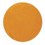 Snazaroo Face Paints - Dark Yellow Ochre 244