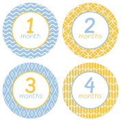 Baby Monthly Stickers Stylish Pattern - Baby Boy Milestone Onesie Stickers - 1-12 Months - Pinkie Penguin