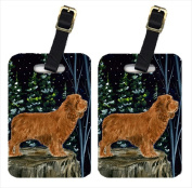 Carolines Treasures SS8174BT Sussex Spaniel Luggage Tags Pack - 2